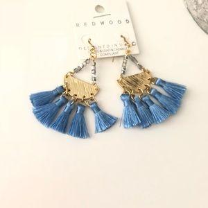 Tassel & Beads Fashion Earrings